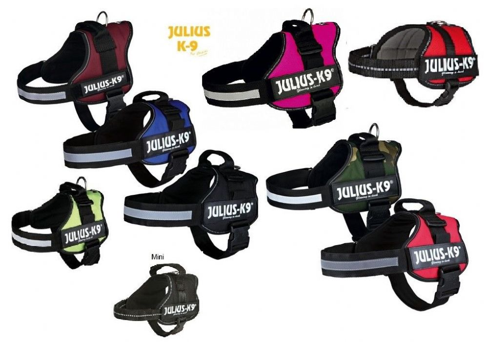 Reviewed - Julius K9 Power Harness | Strong Dog harnesses | Approved